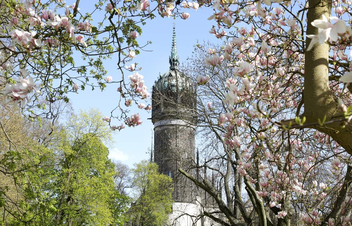 Castle church Wittenberg. Foto: (c) Cornelia Kirsch